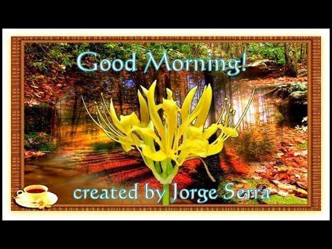 ♫ ♣ Good Morning Wishes ♣ ♫
