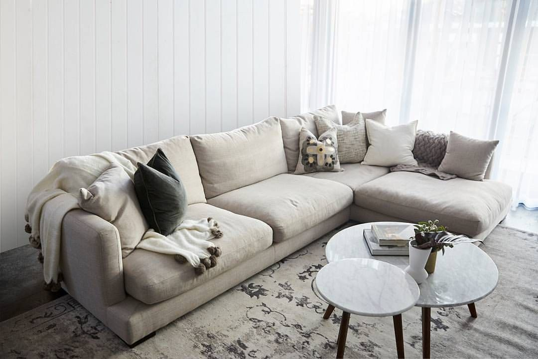 871 Likes 17 Comments Freedom Australia Freedom Australia On Instagram Ronnie Georgia Have Taken It Home Again Winning The H Hamilton Sofa Home Room