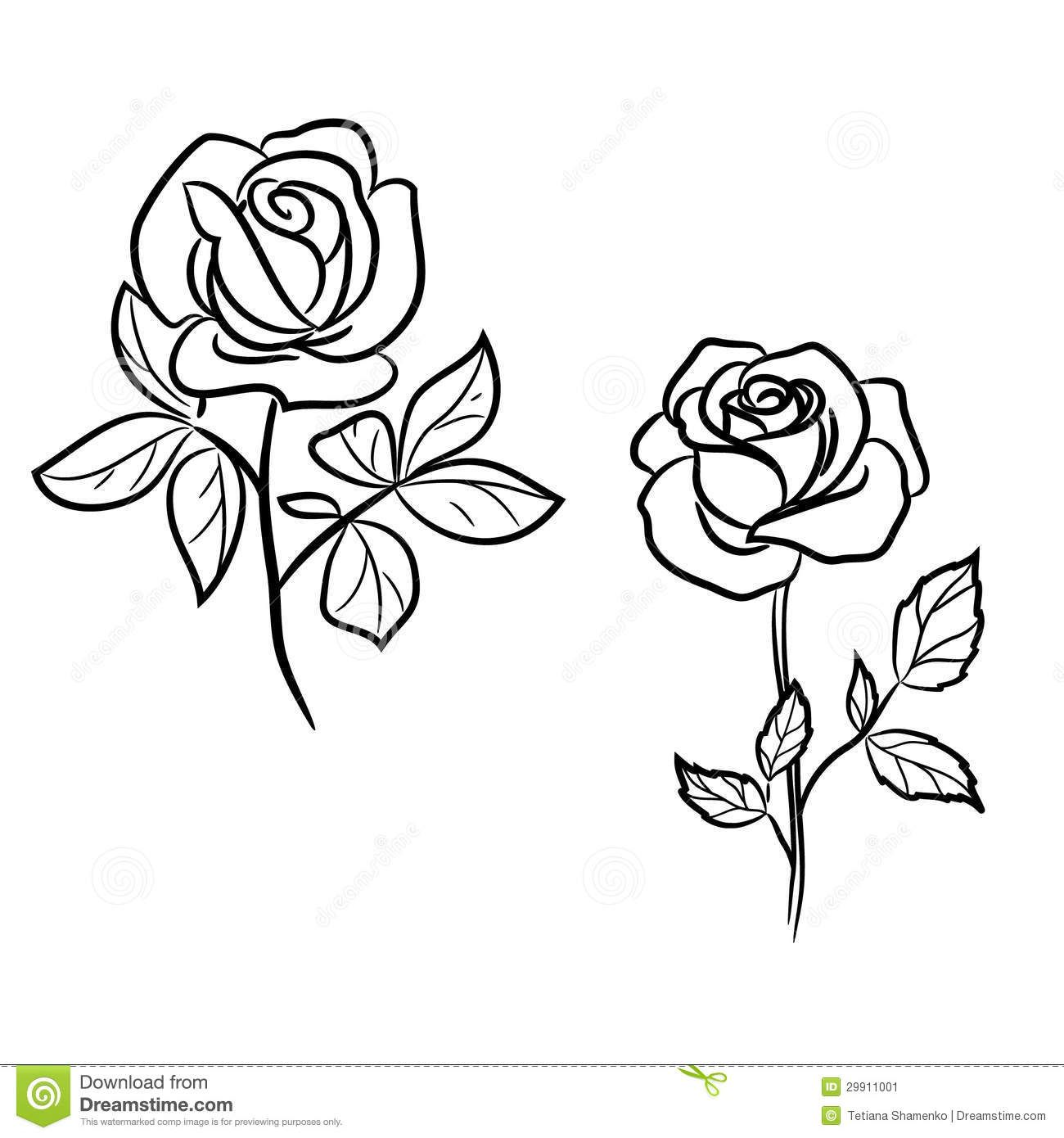 two-dark-roses-white-29911001.jpg (1300×1390)   Rose outline