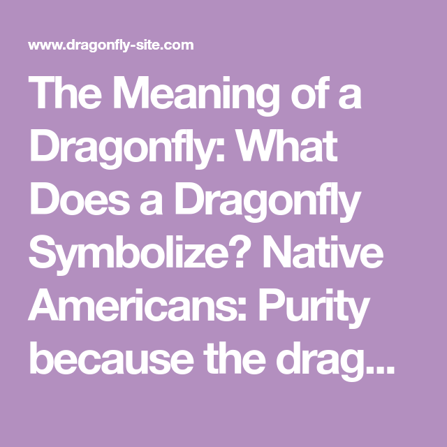 The Meaning Of A Dragonfly What Does A Dragonfly Symbolize Native