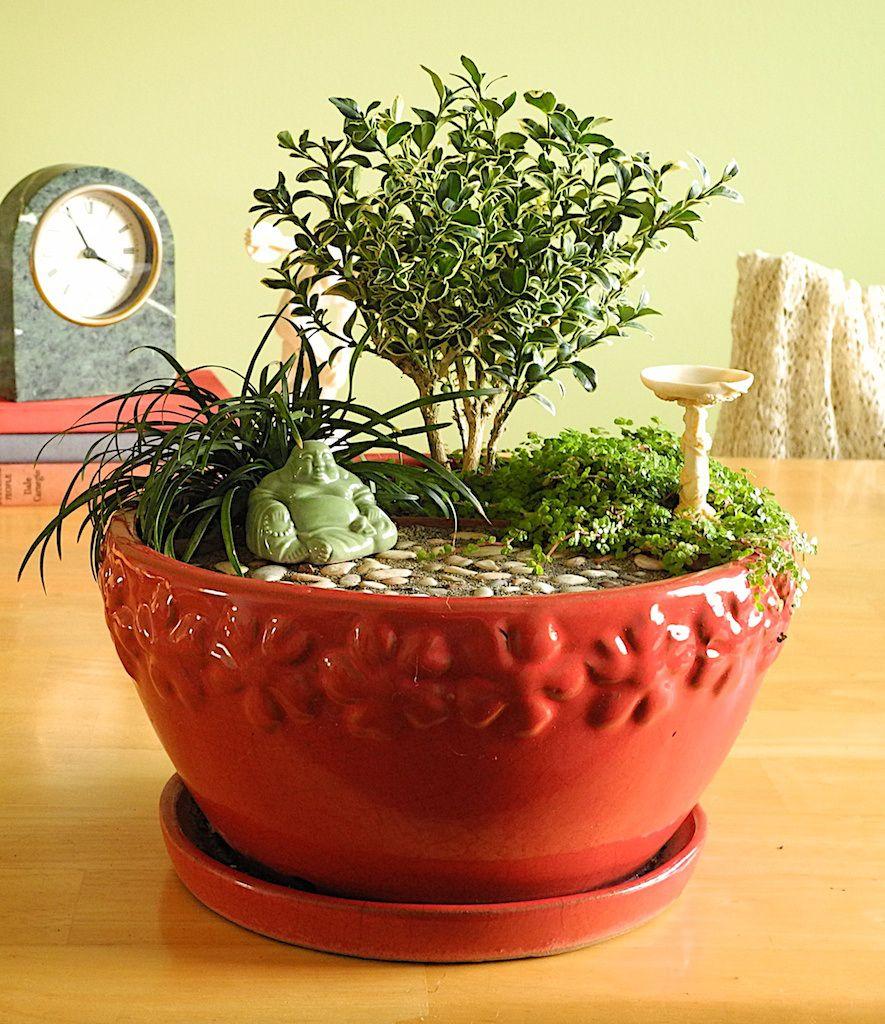 65 Philosophic Zen Garden Designs: MiNiATuRe MeDiTaTioN GaRDeN