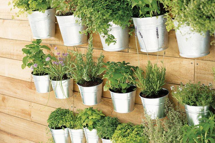 Material Werkzeug Etsy De Krauterwand Pflanzen Kleine Garten