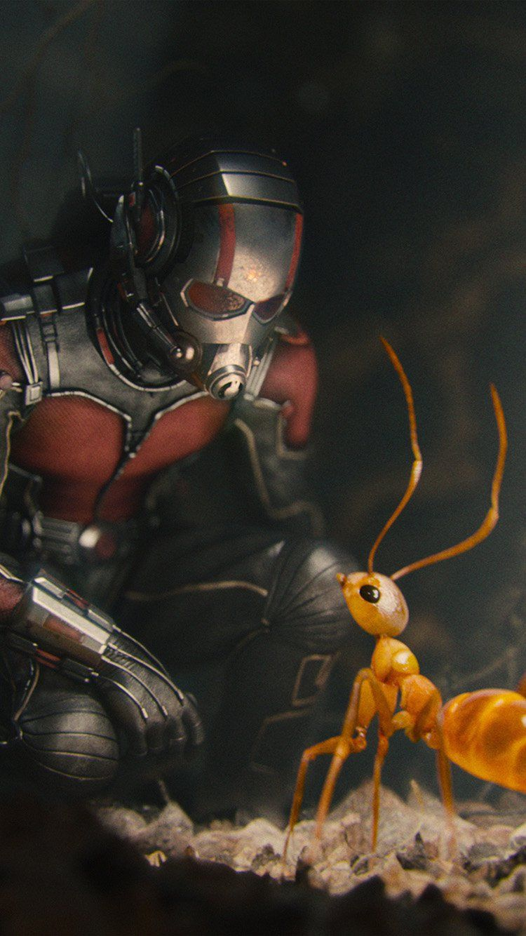 Marvel Antman Metts Ant Film Art Illustration Wallpaper Hd Iphone Ant Man Marvel Marvel Superheroes Marvel