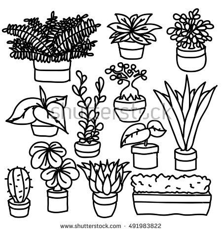 Hand Drawn Pot Plants Vector Set Isolated Coloring Book Art