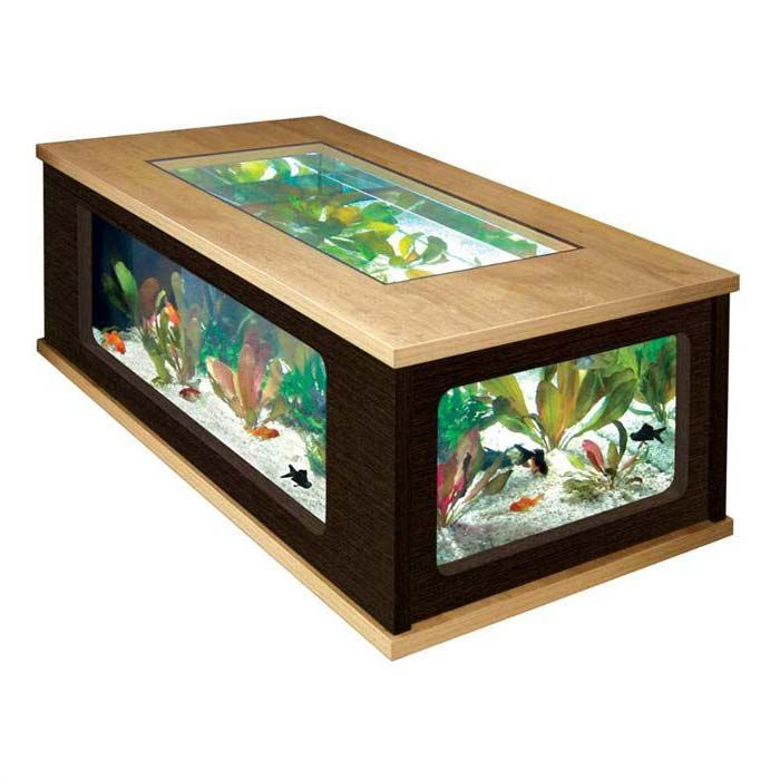 Fish Tank Coffee Table Exclusively Designed To Entertain Fish