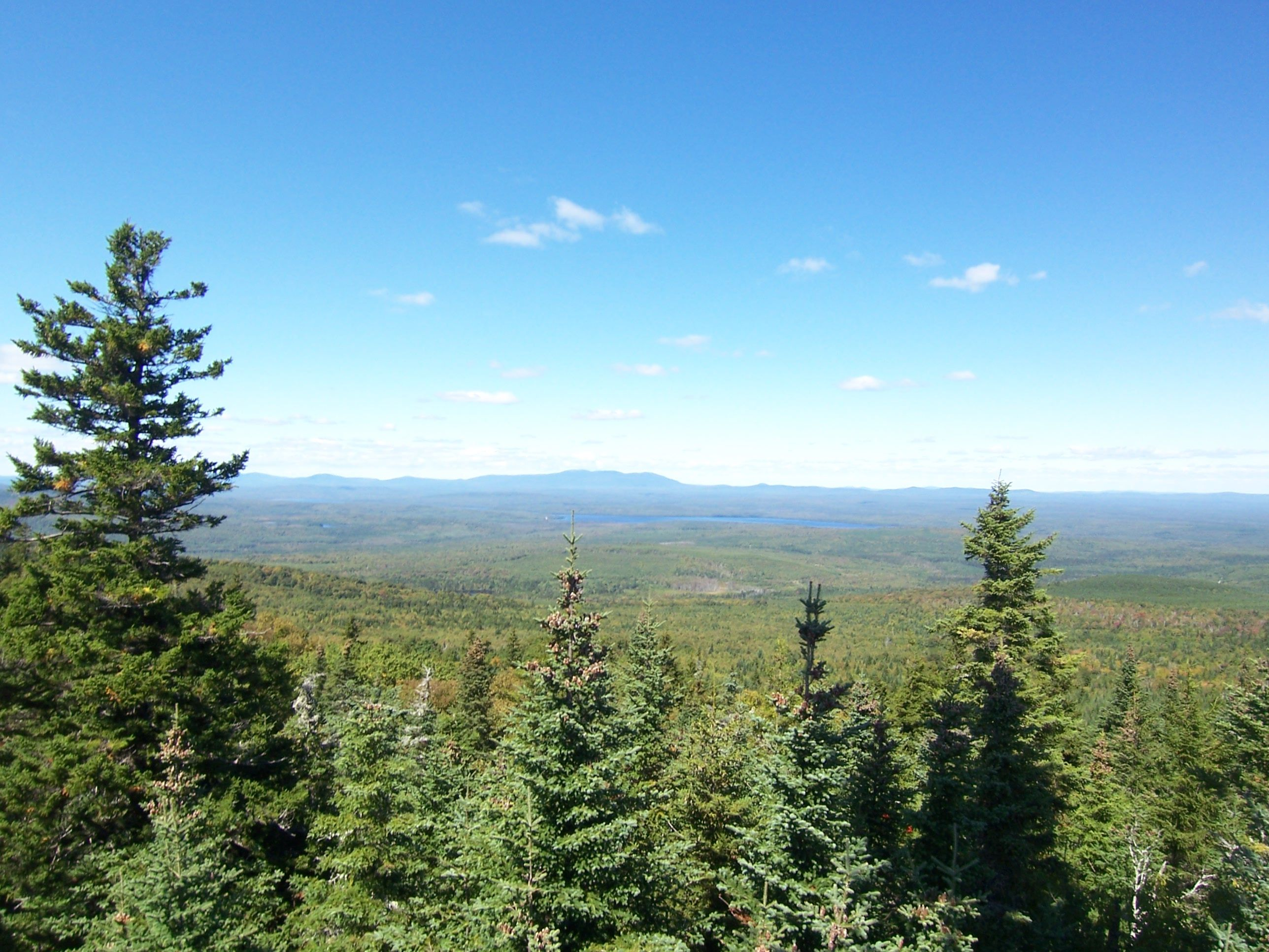 The View from William's Mt., ME | Places I'll Never Forget ...