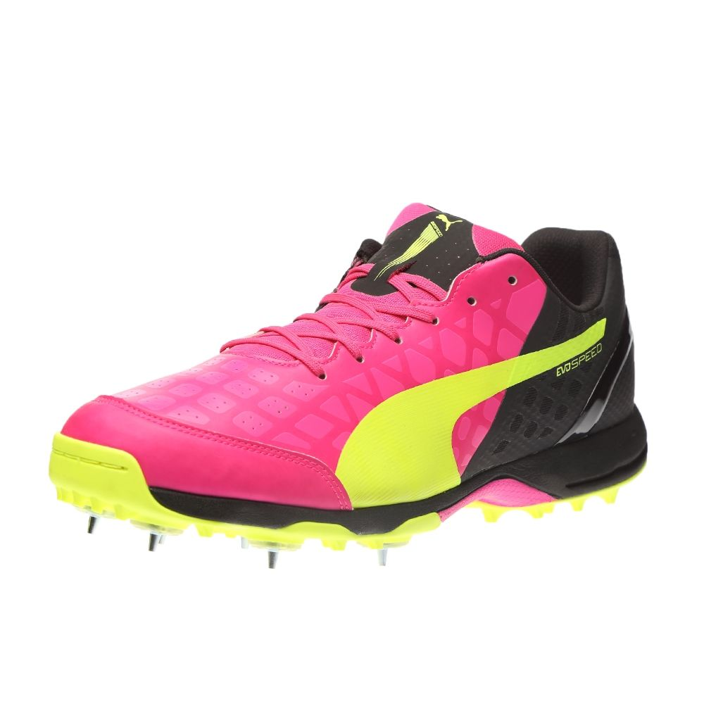 puma new cricket shoes