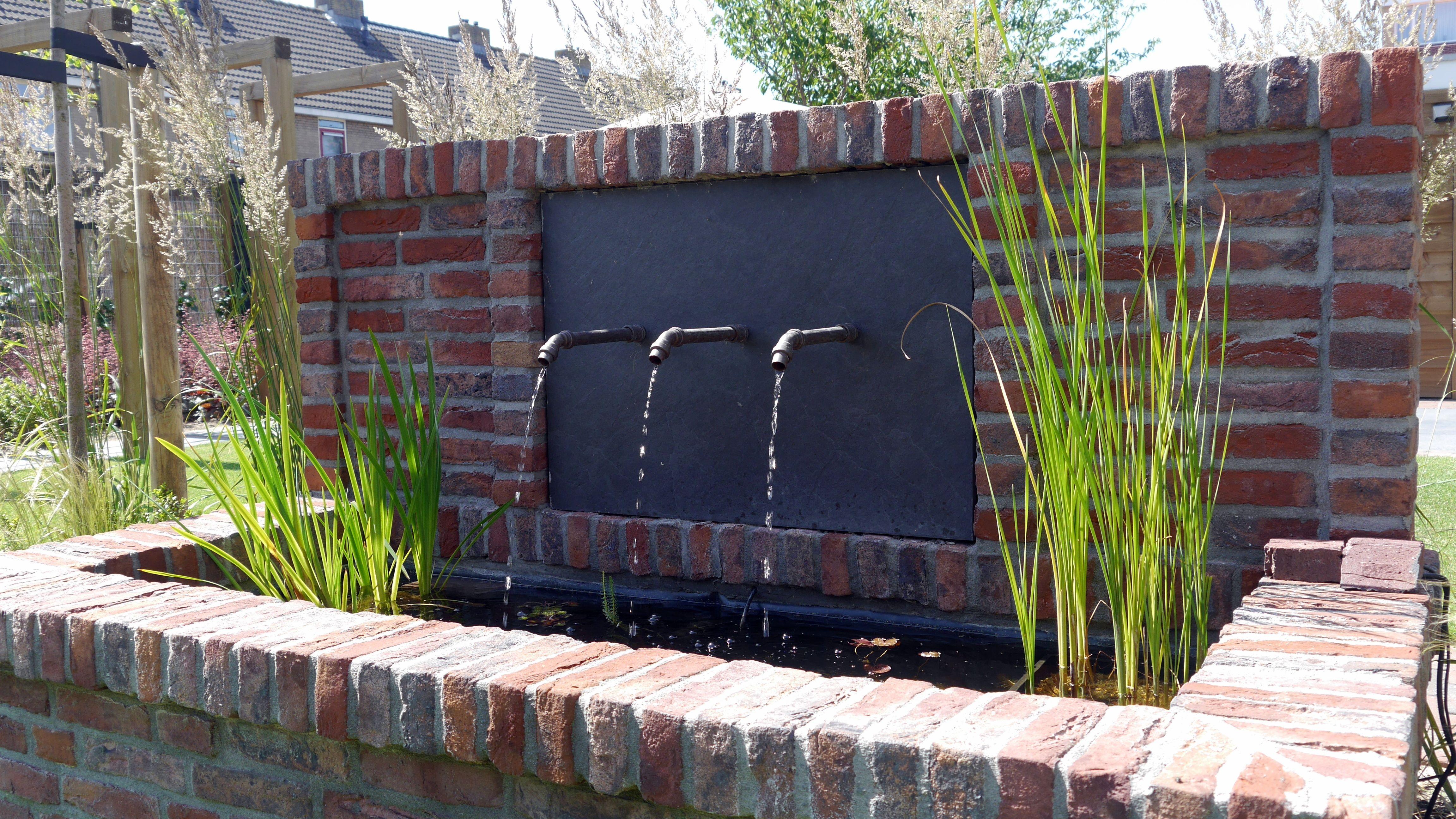 Pin by erwin van der schee on tuin