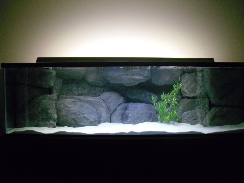 Diy Background Thread Tropical Fish Tanks Aquarium Backgrounds Fish Tank