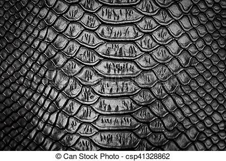 Black Snake Skin Pattern Texture Background Snake Wallpaper Textured Background Snake Skin