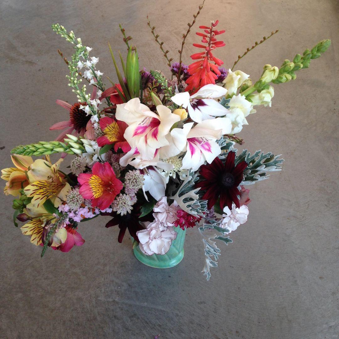 Electric Daisy Flower Farm | Flowers | Seasonal Flowers | British ...