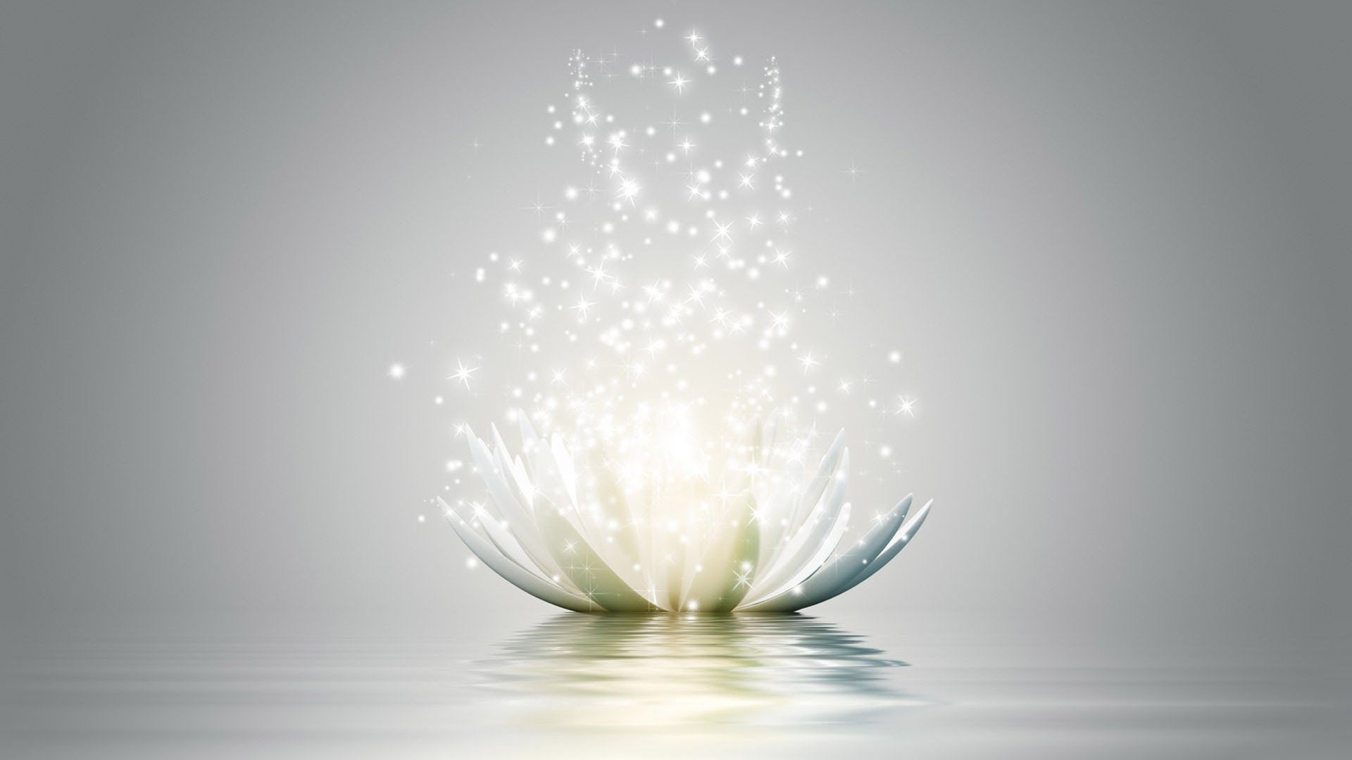 1920x1080 Animated White Lotus Flower As The Symbol Of Yoga Hd