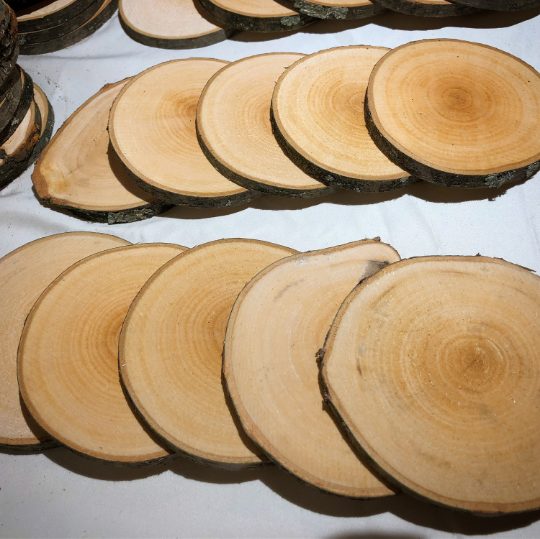 Wood Slices In 2020 With Images Wood Slices