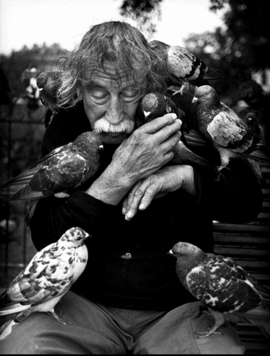 182 twitter bird man human photography portrait photography vignette photography
