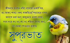 Good Morning Images In Bengali Language Goodmorningimagesnewcom