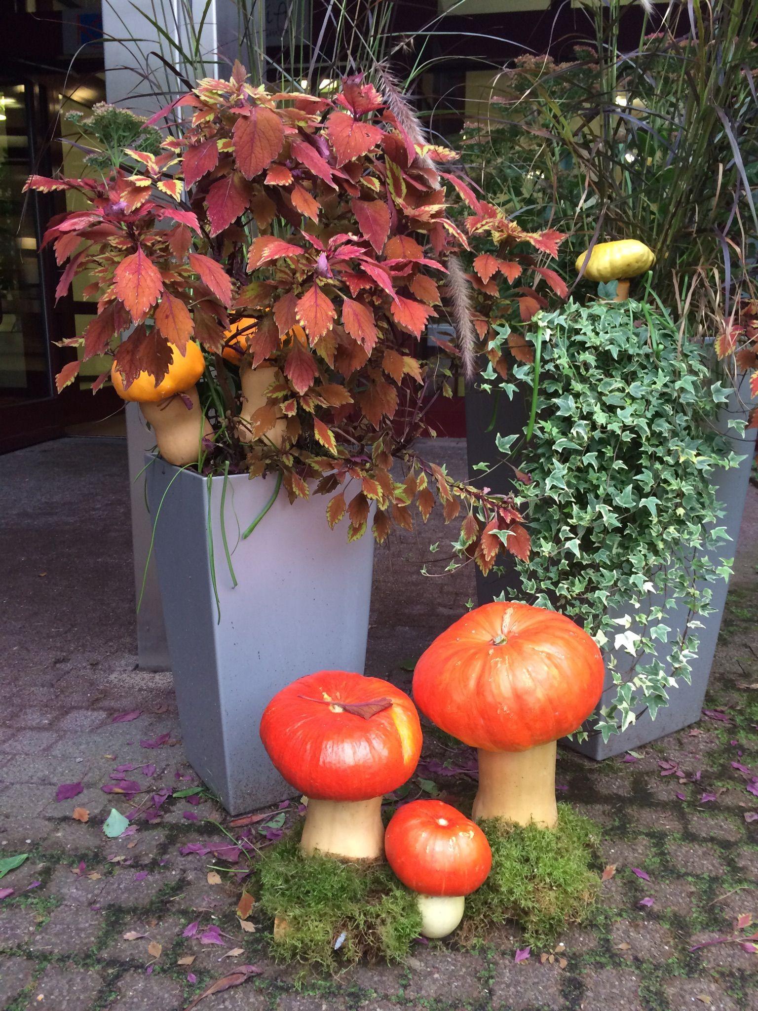 Herbstdekoration im Eingangsbereich. Die Pilze sind aus Kürbis.