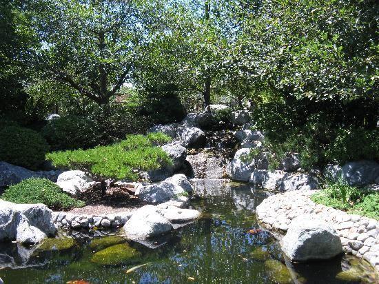 explore japanese gardens japanese koi and more - Japanese Koi Garden