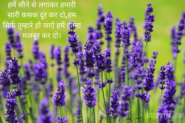 Hindi Shayari Wallpaper For Whatsaap Status And Facebook Dp Free Download In 2020 Buy Lavender Plants Medicinal Herbs Garden Lavender Plant