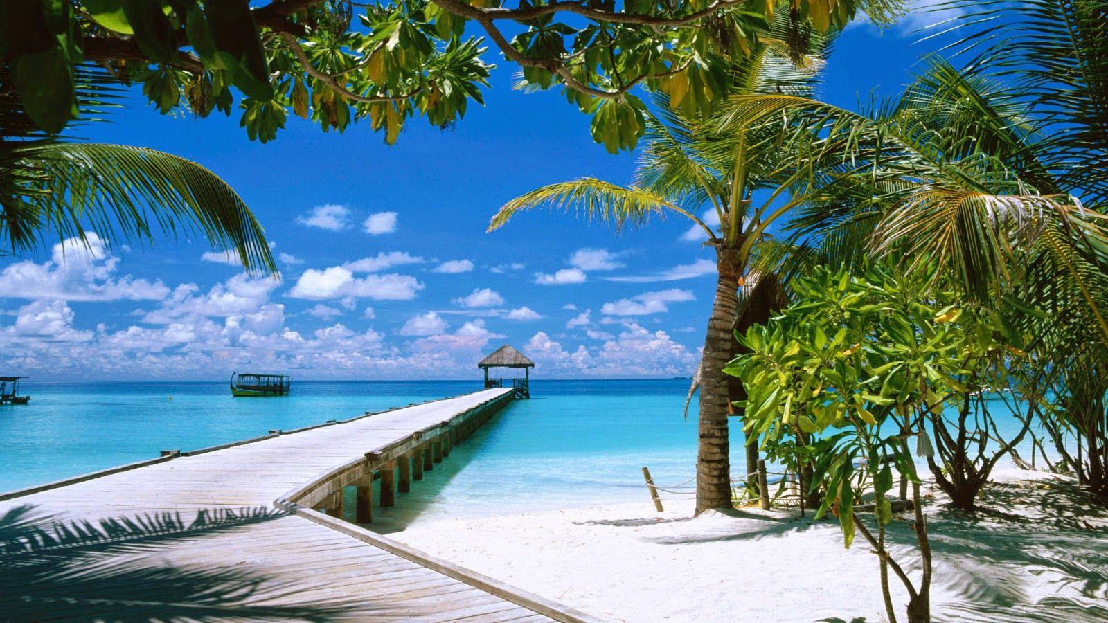 احباب الجزائر Ahbab Aljazair مناظر خلابة في جزر المالديف السياحة في البلاد الاسلامية Beaches In The World Beautiful Beaches Maldives Island