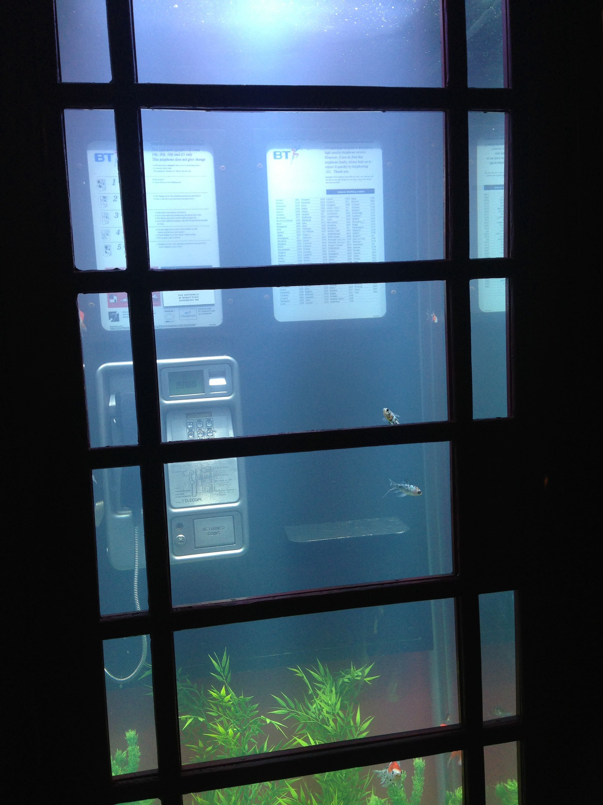 652955d77705011db3f55dcd8cf833d6 Impressionnant De Lumiere Aquarium