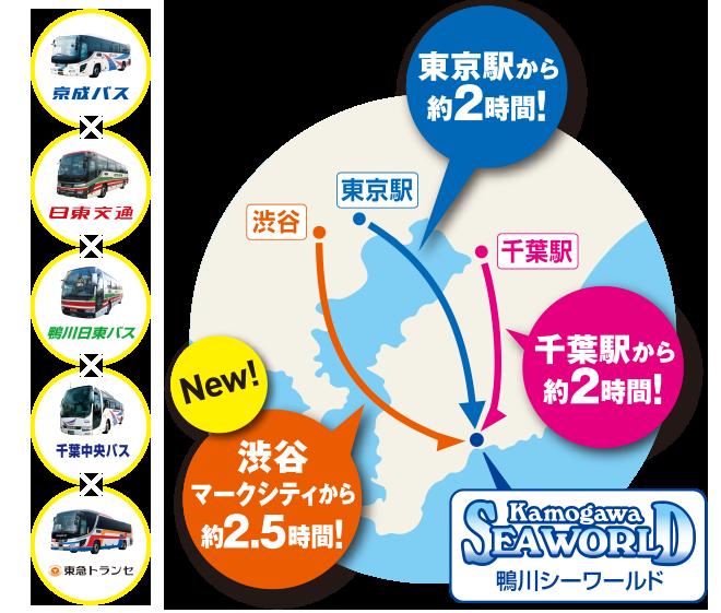 高速バスが便利 | 鴨川シーワールド-東京・千葉の水族館テーマパーク