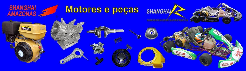 Motores estacionarios e peças.