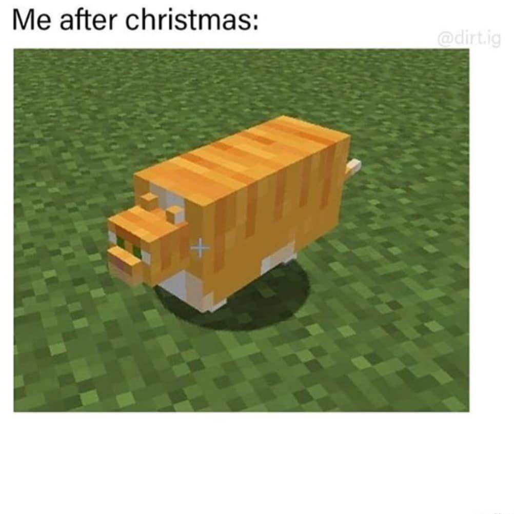Memes Mem Meme Poland Europe Like L4l F4f Christmas Cat Minecraft Minecraft Memes Memes Gaming Memes