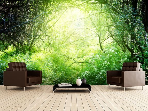 Forest Wall Mural http://www.wallsauce/viewinroom.php/chairs/6576?flip=0
