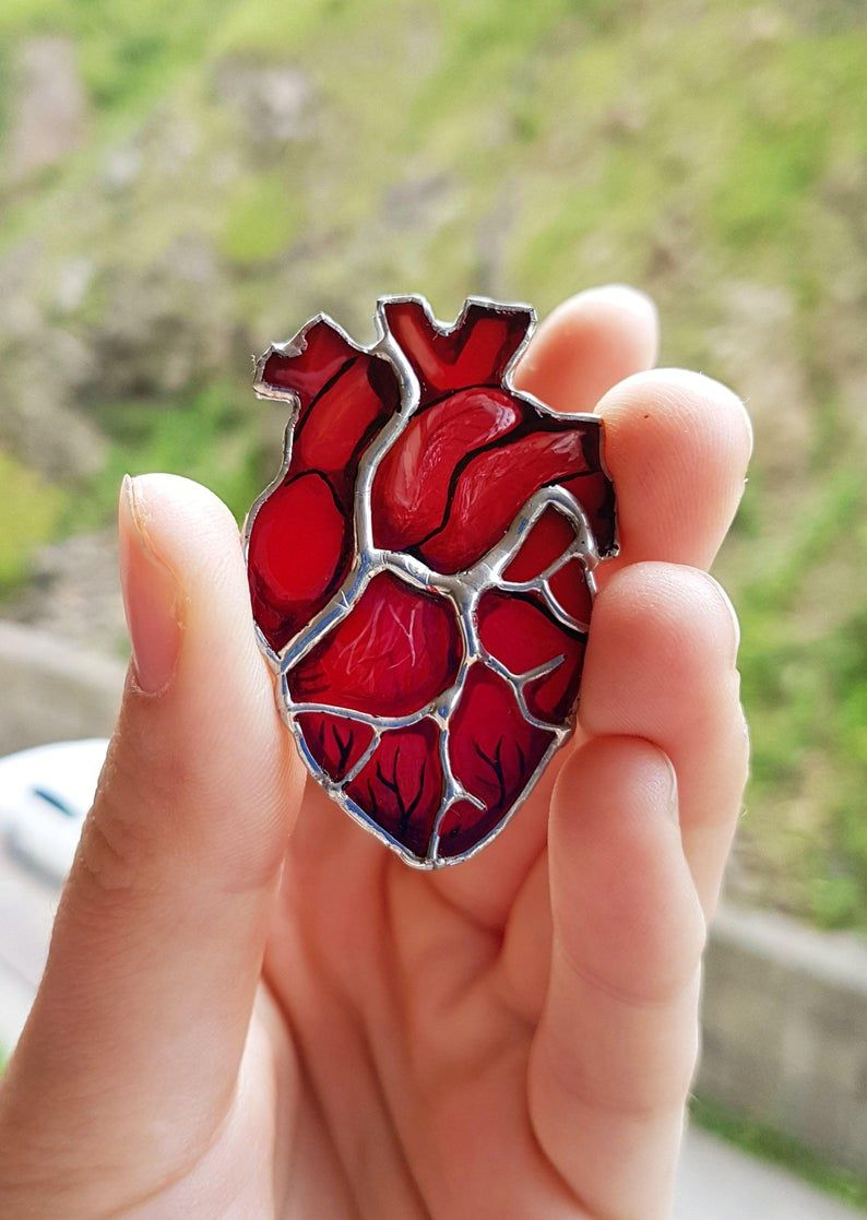 Anatomical Heart Brooch Real Anatomy Pin Stained Glass | Etsy