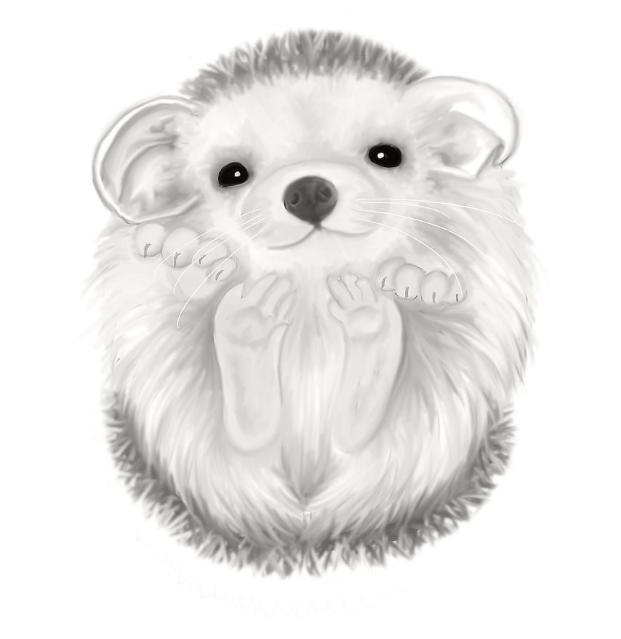 Pin By Dawndonyou On Cartooned Hedgehog Drawing Hedgehog