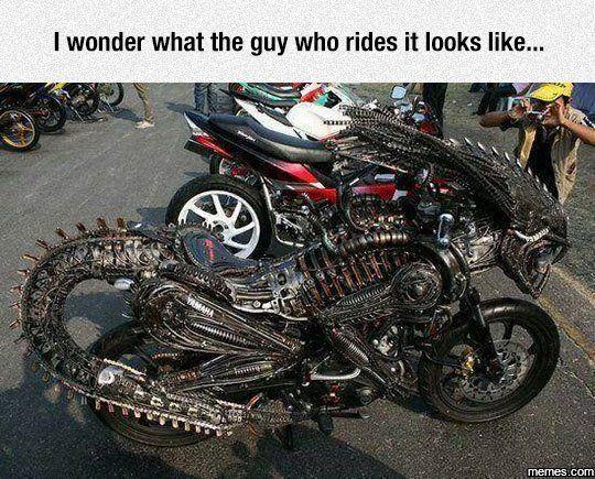 Predalien Bike #Funny #Memespic.twitter.com/dYdvUkoSBu http://ibeebz.com
