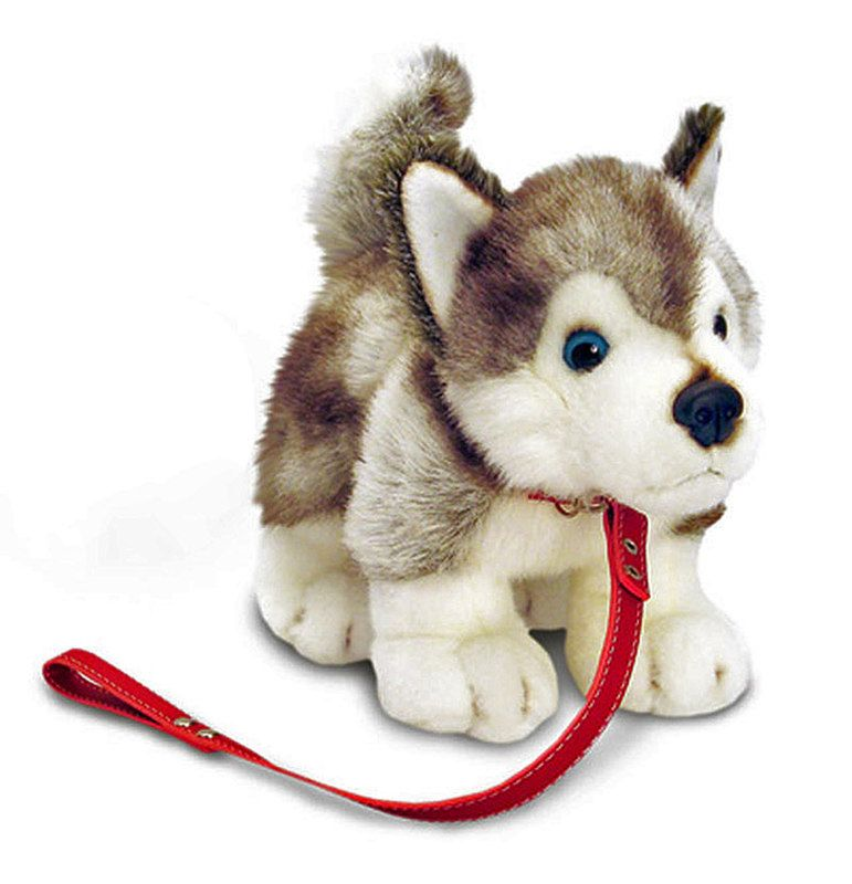 d053e790a Title: Lil Pups With Lead Husky Size: Price: AUS$ 32.95 Brand : Keel Toys  UK Lots more items like this available at: www.stuffedwithplushtoys.com 100  Day ...