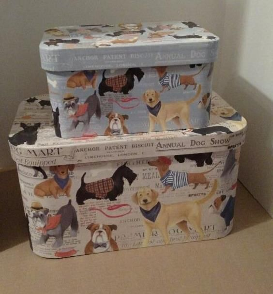 Decorative File Storage Boxes With Lids Molly & Rex Dog Show Two 2 Decorative File Storage Bins Boxes