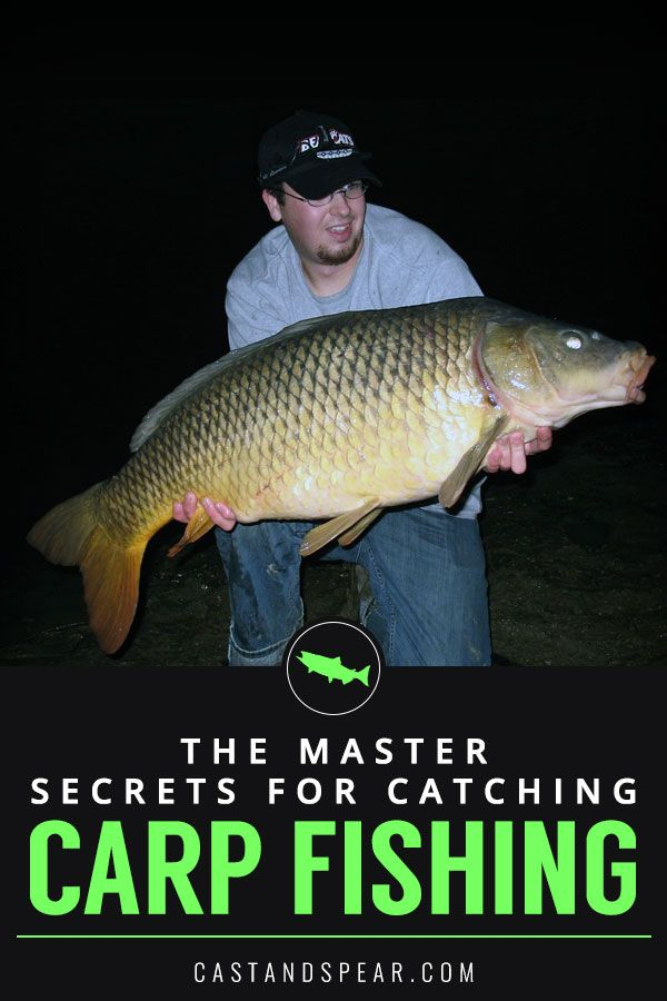 Carp fishing is the rage in many parts of the world. While ...