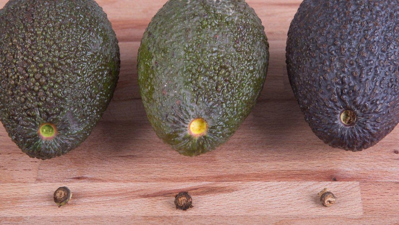 wann ist eine avocado reif