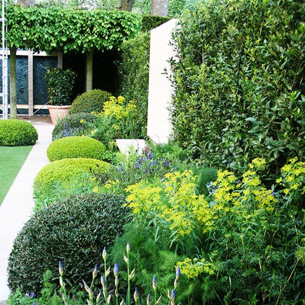 Modern Italian Garden Design: At The Chelsea Flower Show 2014, The Gold Medal Winning