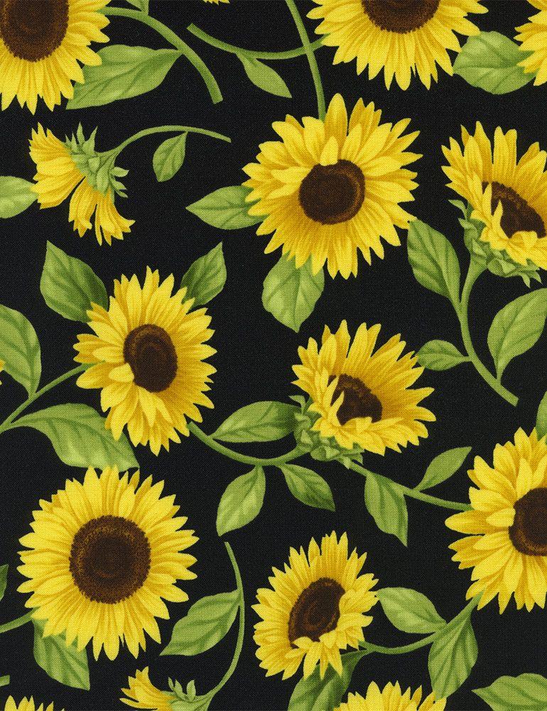 Fleur Beautiful Sunflowers Fabric C9830 On Black Fabric Sunflower Pictures Sunflower Wallpaper Sunflower Art