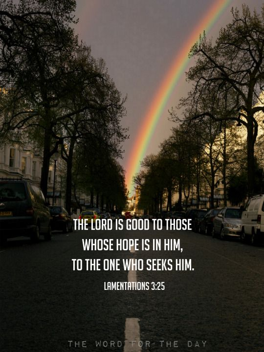 The Word For The Day Hope In The Lord Hope Bible Bible Study Scripture Rainbow Bible
