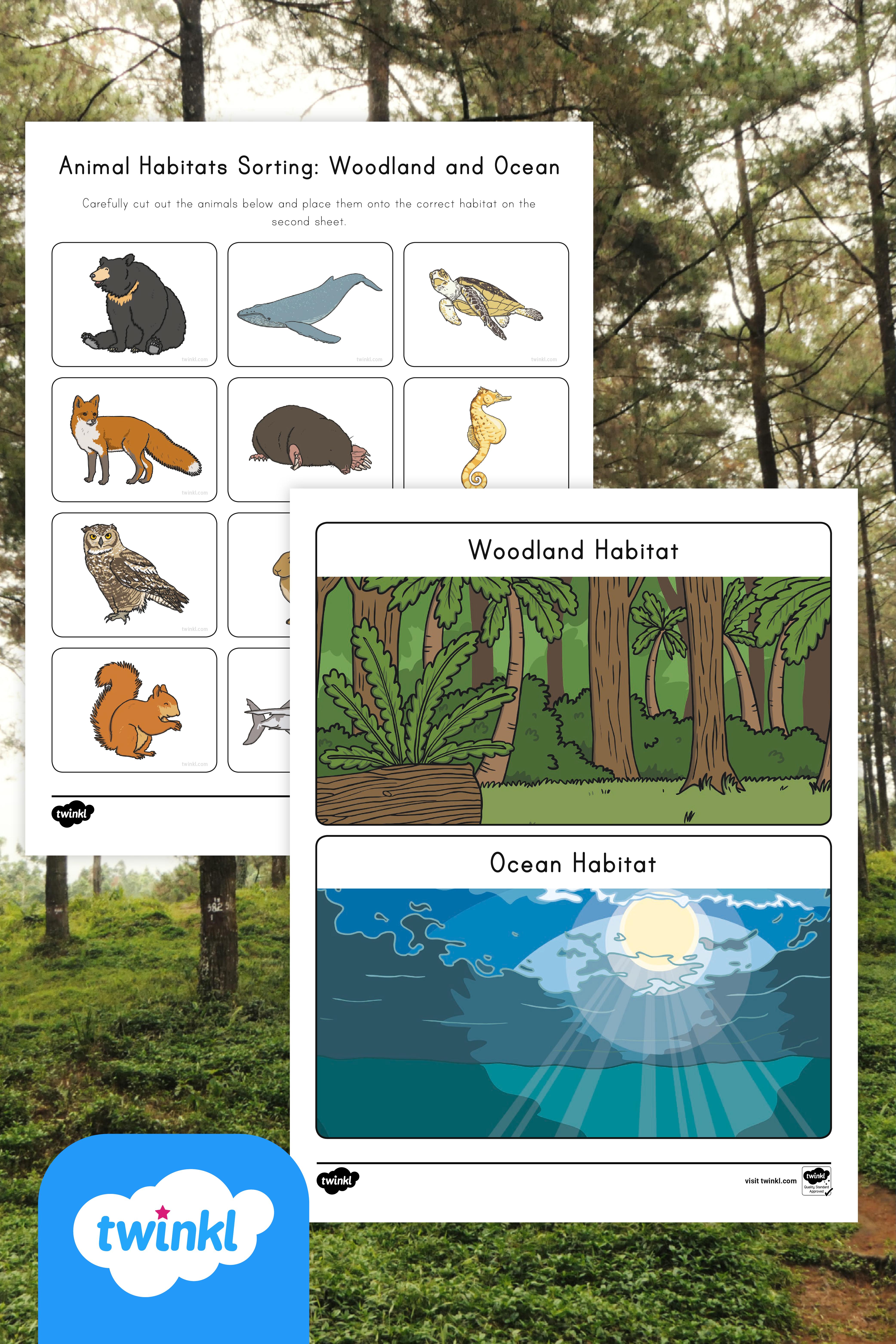 Animal Habitats Sorting Activity Woodland And Ocean Animal Habitats Sorting Activities Ocean Habitat [ 6250 x 4167 Pixel ]