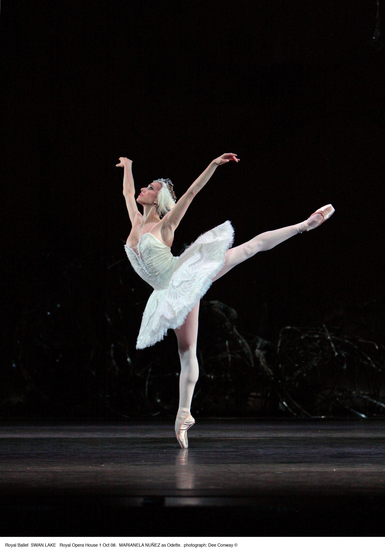 Marianela Nunez Con Imagenes Lago De Los Cisnes Cisnes Ballet