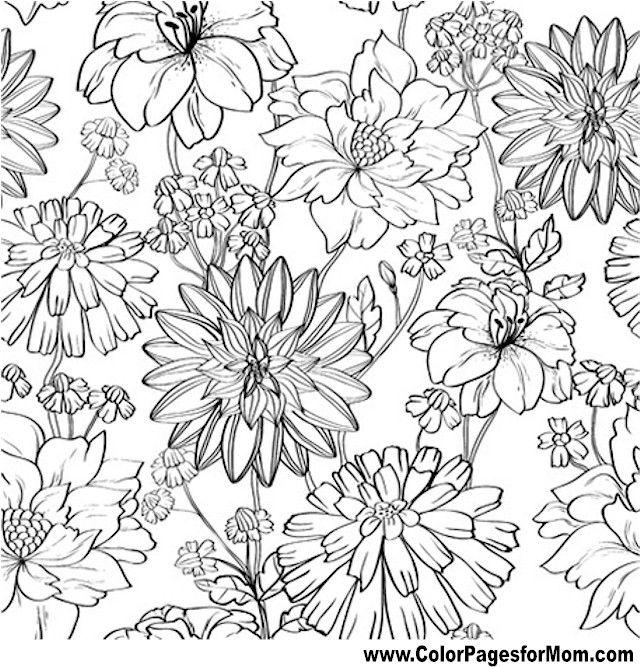 Flower Coloring Page 81 | color pages | Pinterest | Mandalas, Molde ...