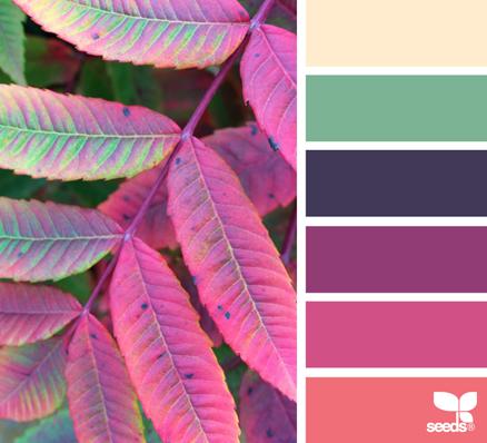 Autumn Spectrum - http://design-seeds.com/index.php/home/entry/autumn-spectrum1