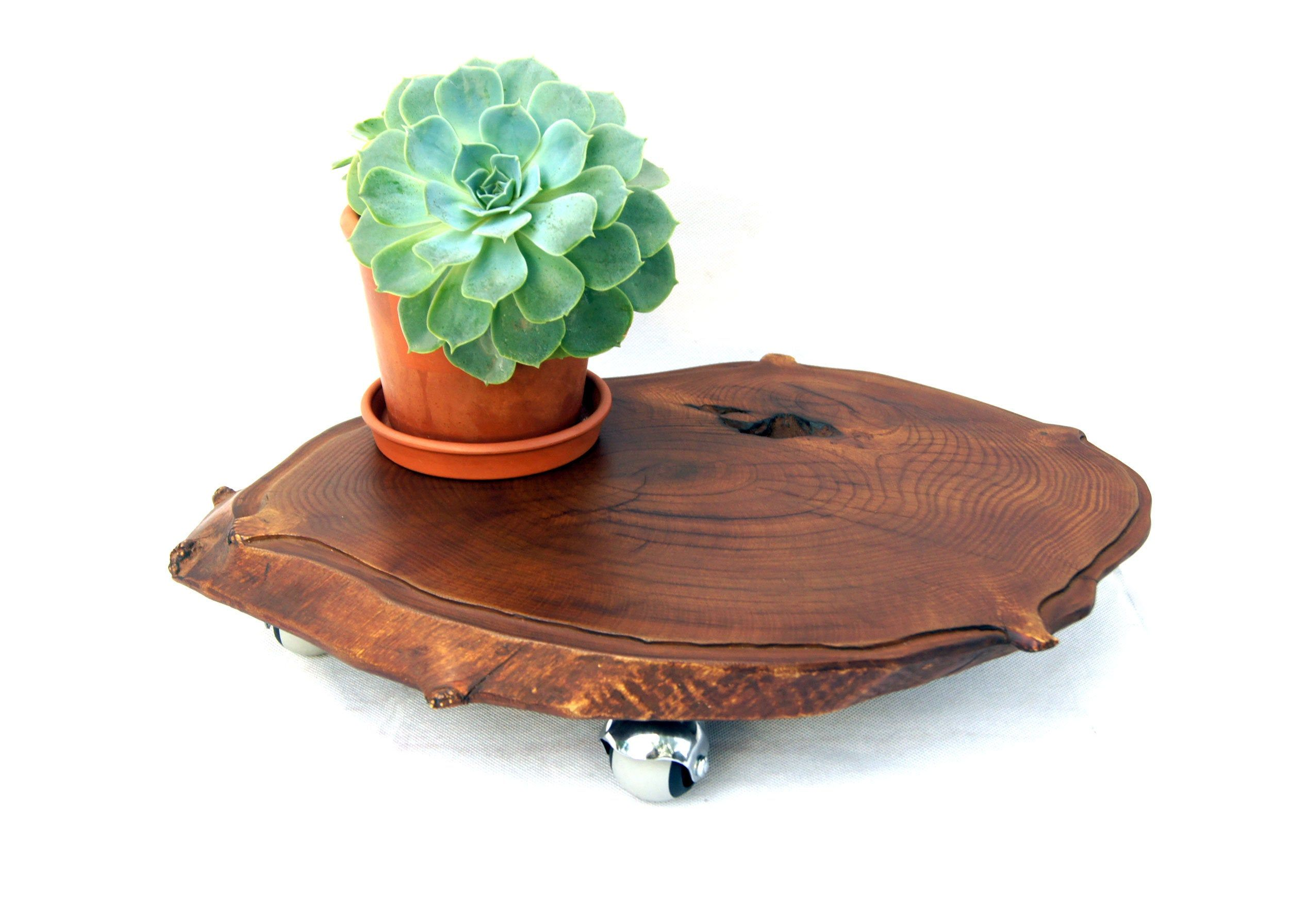 Live Edge Natural Wood Slab Plant Stand With Wheels Large Etsy Wooden Plant Stands Planter Stand Indoor Rustic Pots