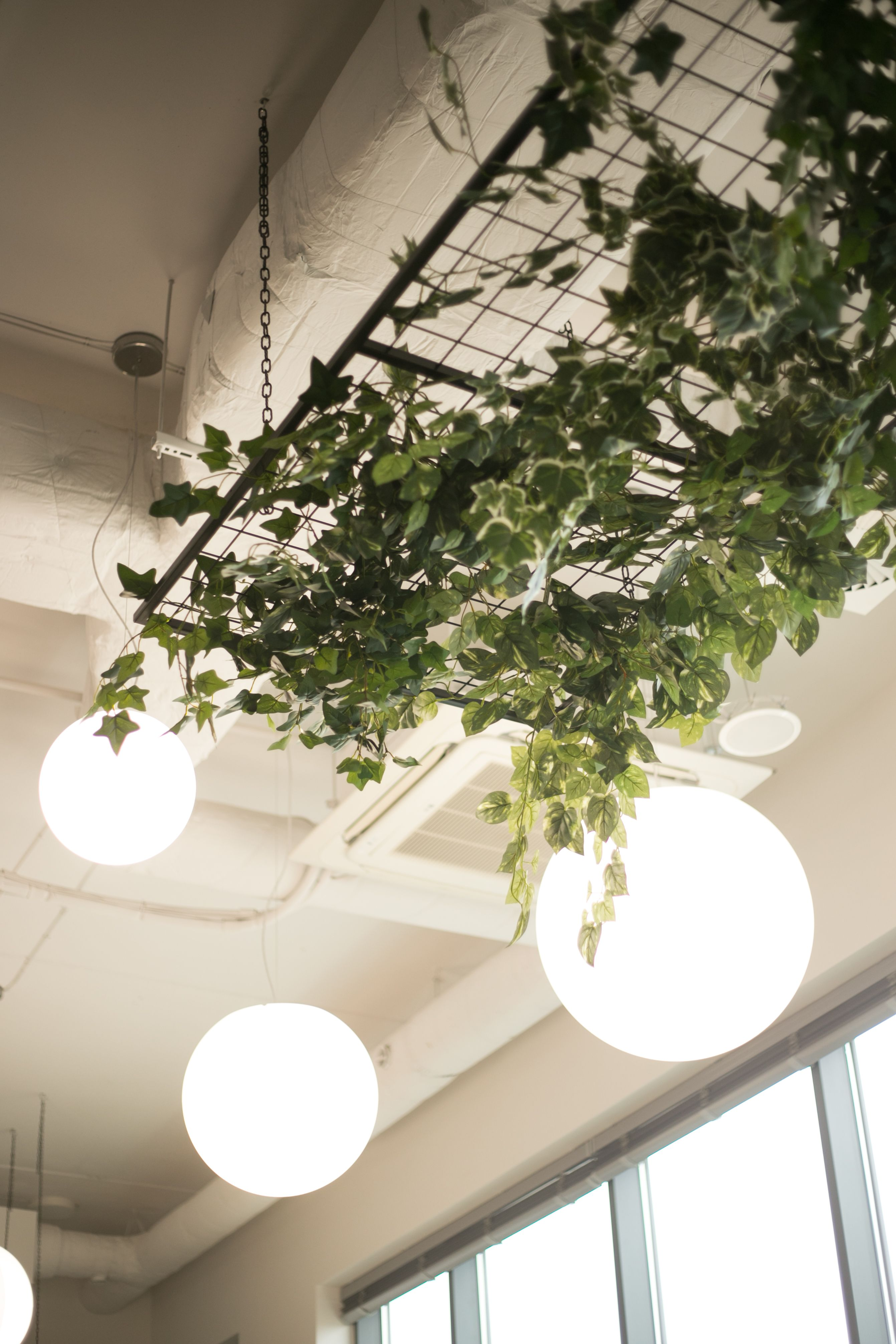 Hanging Grilles With Artificial Plants Cafe Interior Design