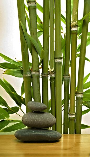 Fotomurales Bambú Y Piedras En 2019 Jardines Zen Piedras
