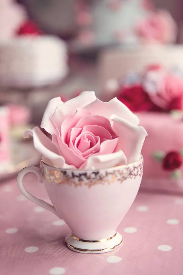 pretty pink teacup and rose