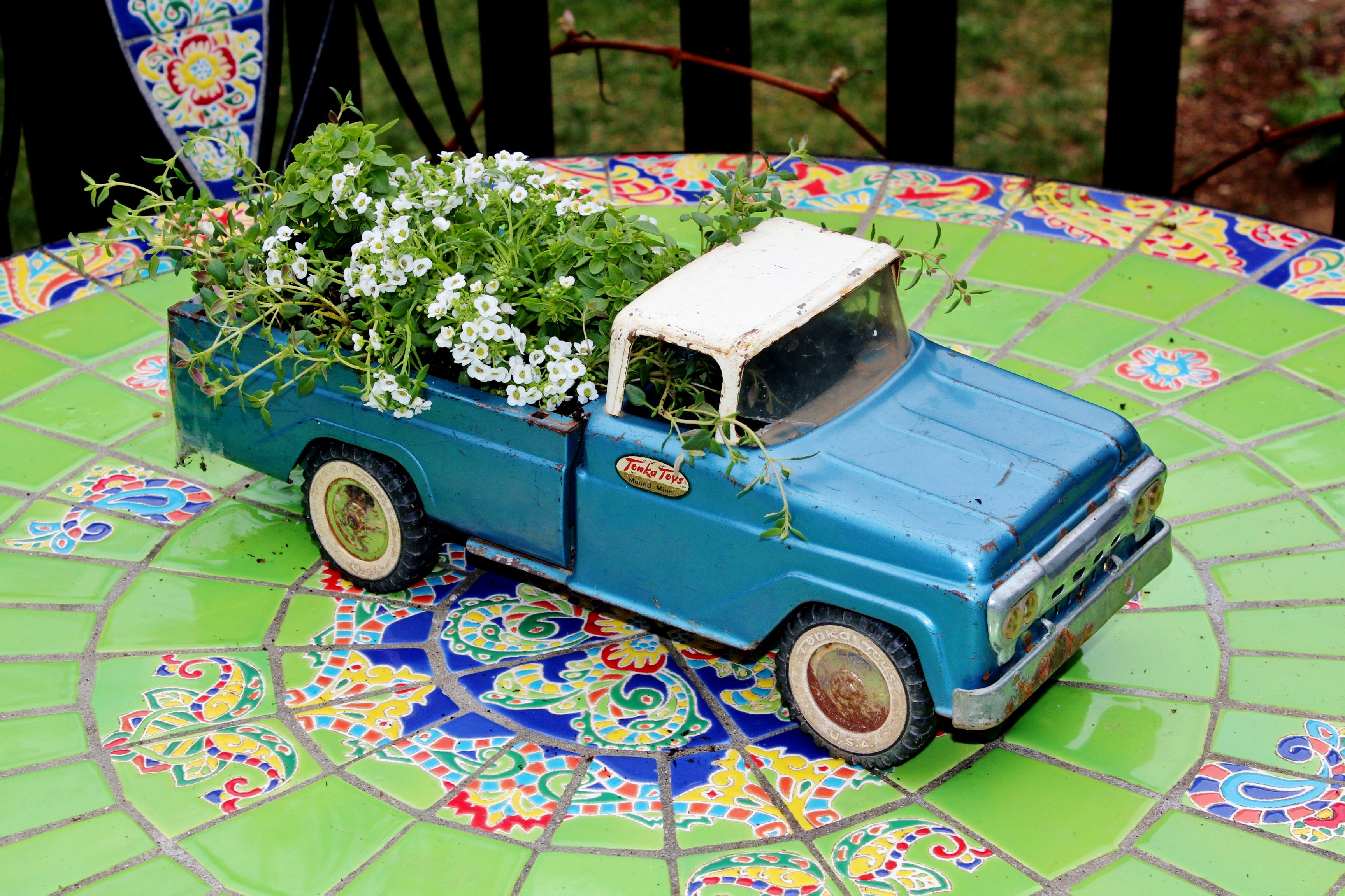 Earth Day Project with my toddler, we took an old broken pick up truck and planted it with Thyme, boxwood Basil, and Alyssum. He thinks the truck looks cool now and I think it has a renewed life!