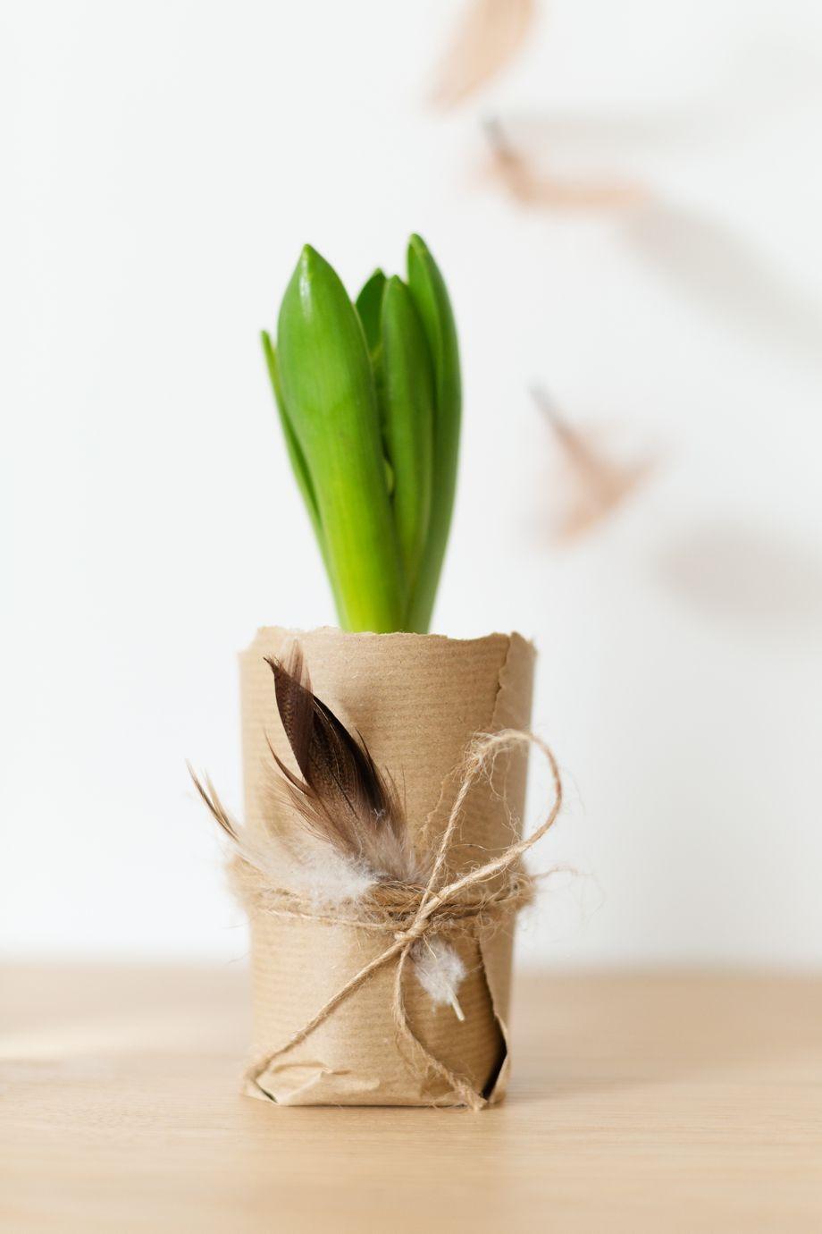 dekoidee mit blumenzwiebeln floristik pinterest blumenzwiebeln ostern und fr hling. Black Bedroom Furniture Sets. Home Design Ideas