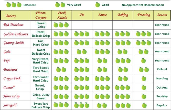 types of green apples. chart of apples and uses - bing images types green