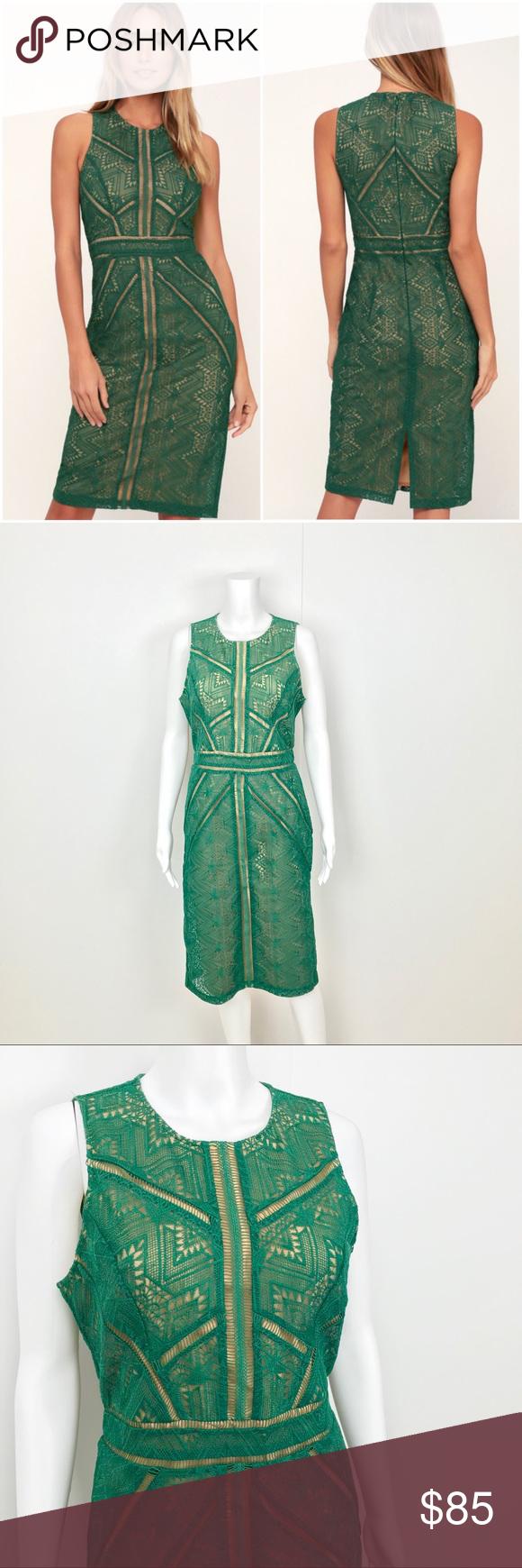 Bardot Eve Green Lace Sheath Midi Dress Sheer Dark Green